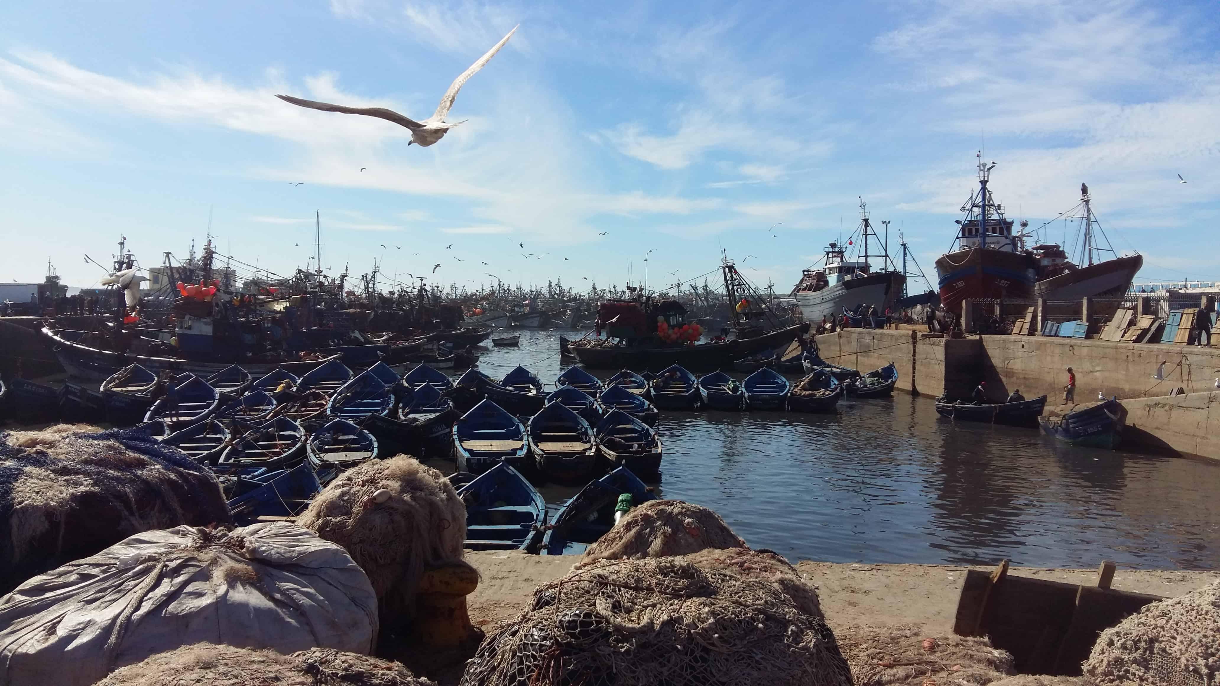 Marocco. Giorno 4 – Essaouira