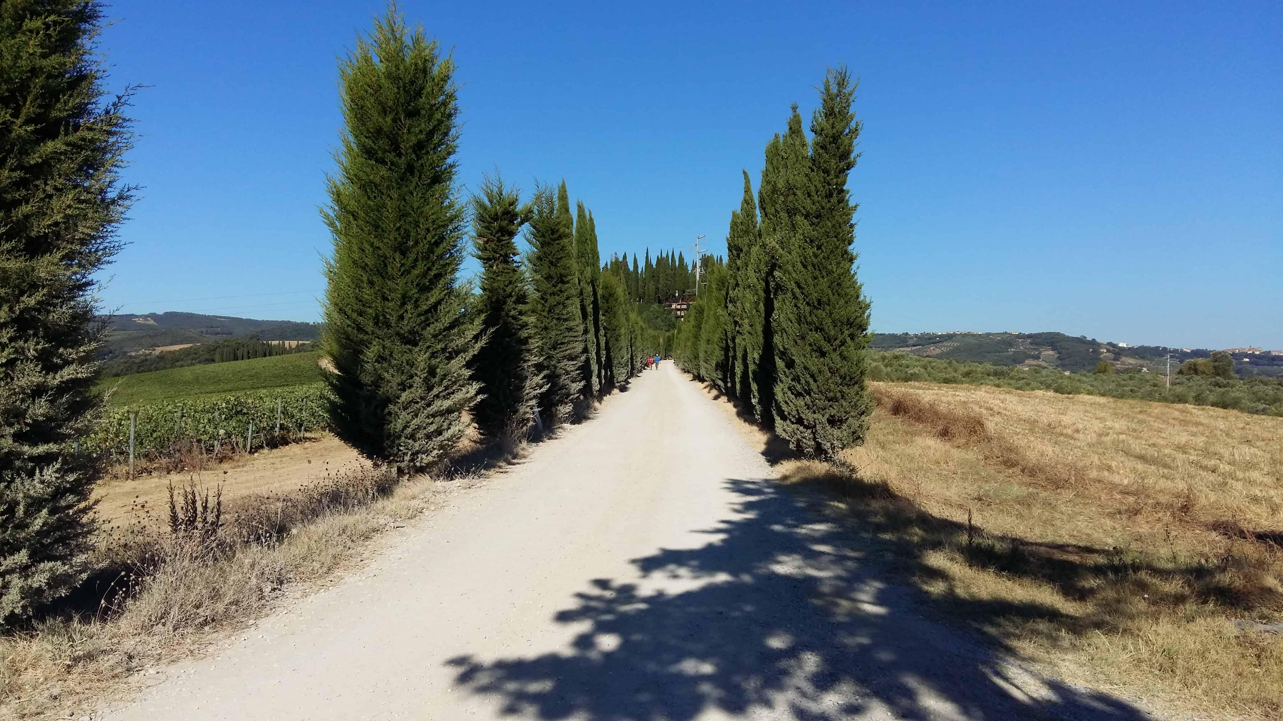 Via Francigena. Giorno 28 – da Gambassi Terme a San Gimignano