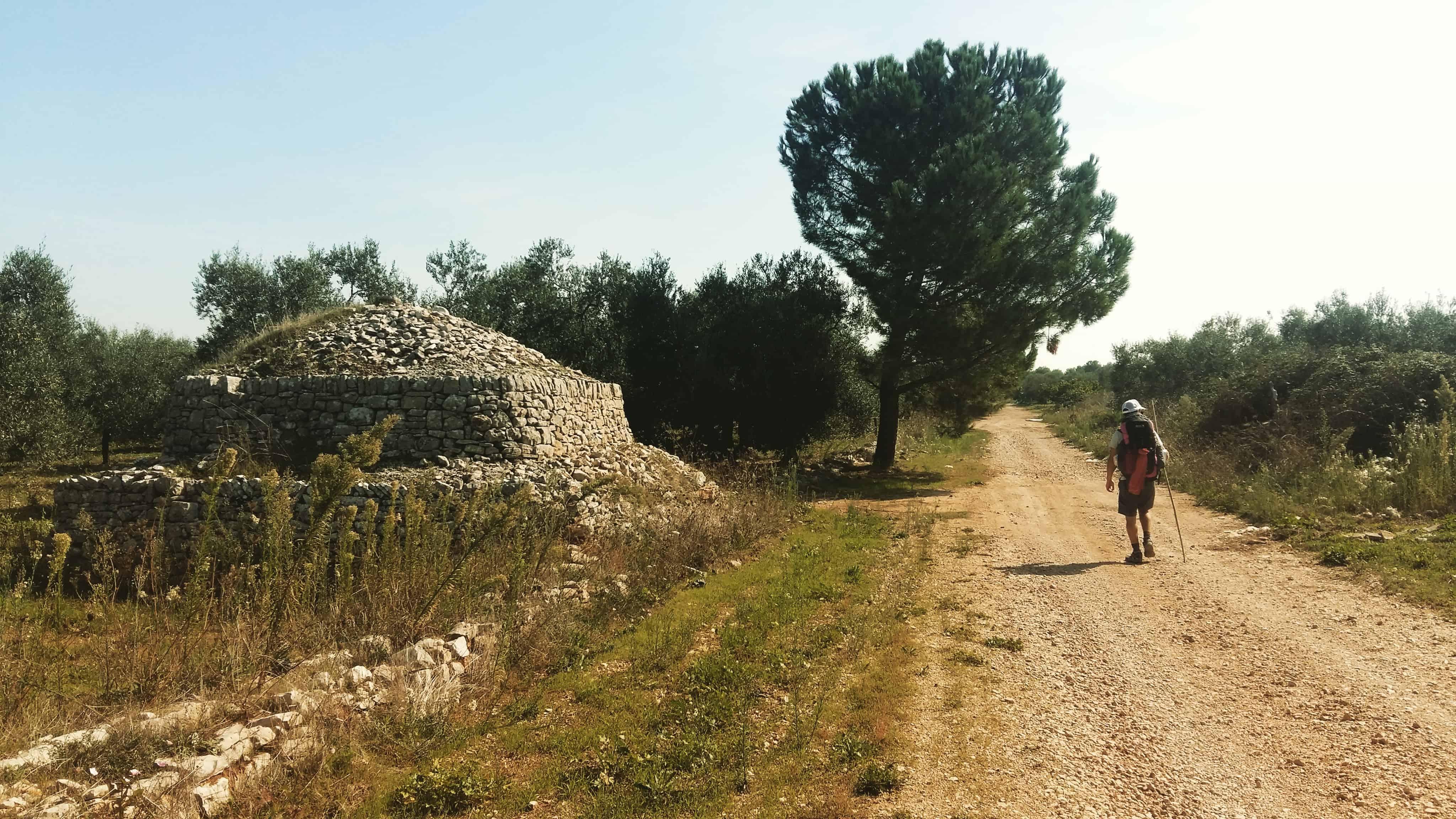Via Francigena. Giorno 59 – da Corato a Bitonto